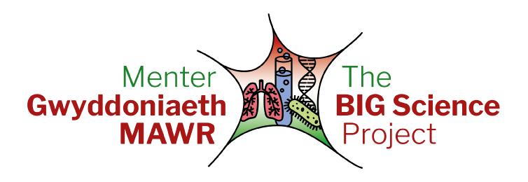 Big Science Project logo-design by Howard Adair